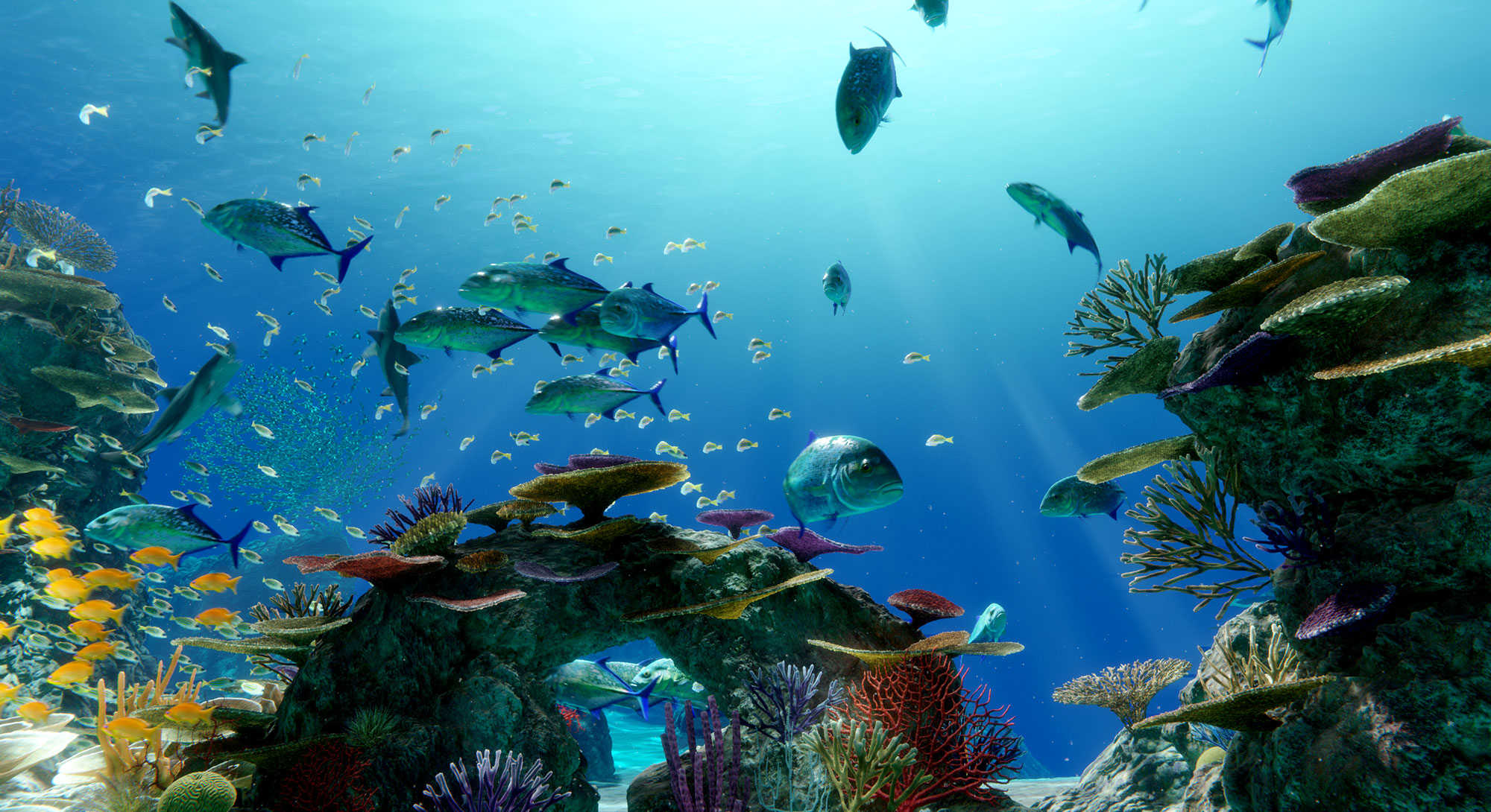 A 3D digital marine ecosystem of the Great Barrier Reef
