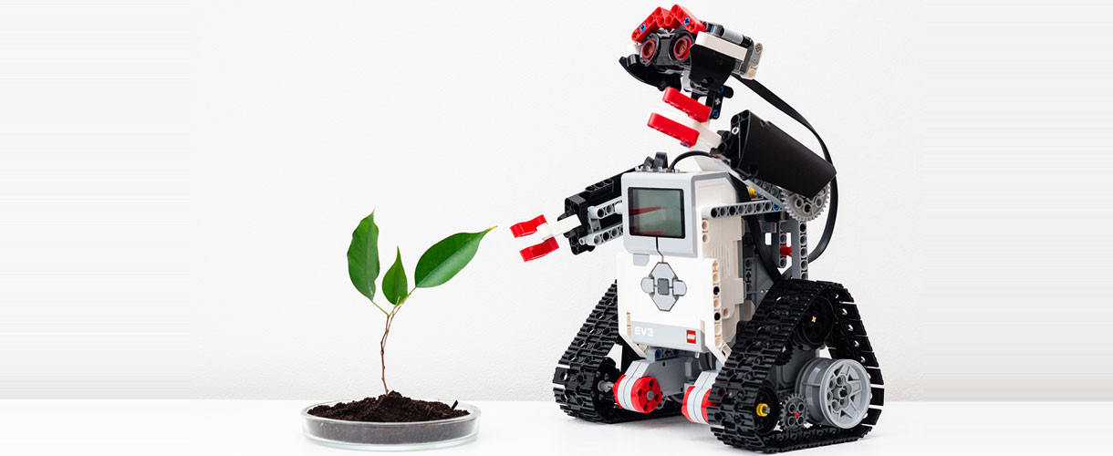 robot and plant